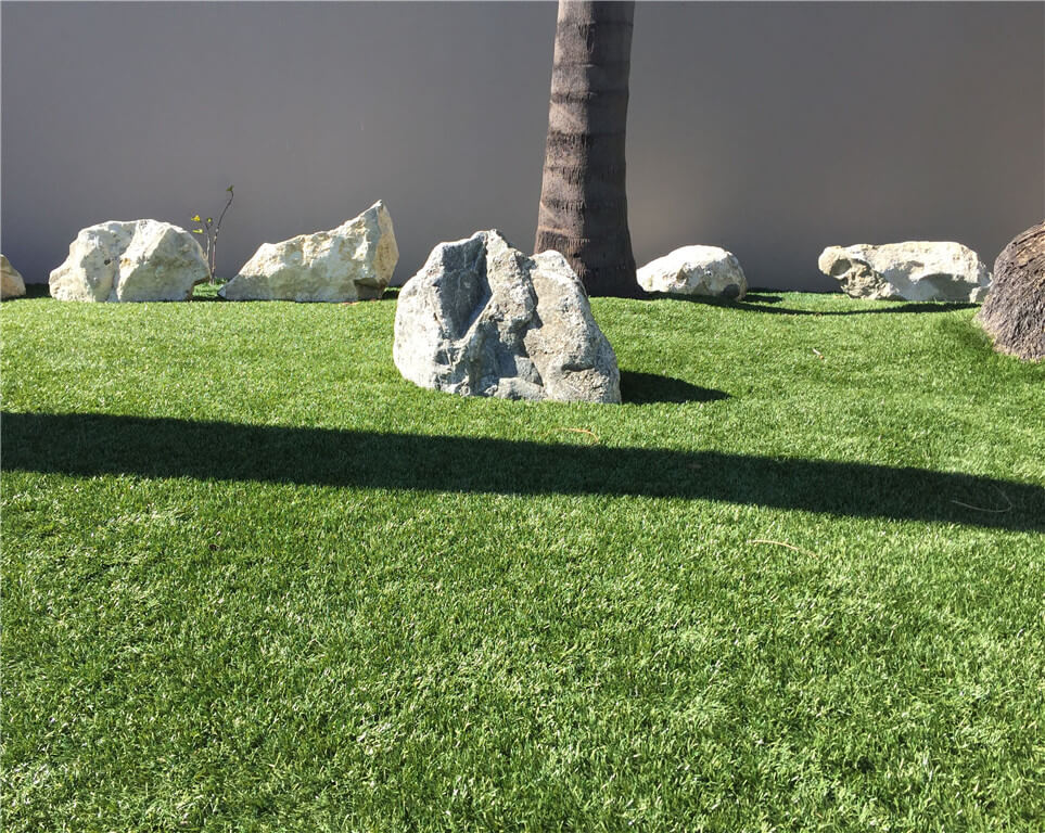 1-decorativa-Residential Landscape Grass