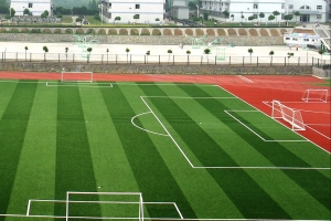 Football turf soccer field