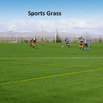 Sports Grass_PrettieGrass