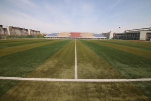 football grass olive green synthetic turf